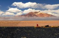 Salar de Tara, frontera Argentina, Bolivia, Chile