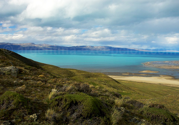 Rive du lac Argentino, El Calafate