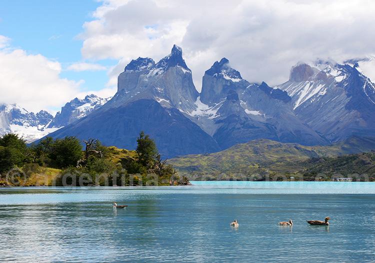 Que voir dans le Torres del Paine ?
