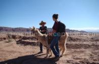 Trekking à Atacama
