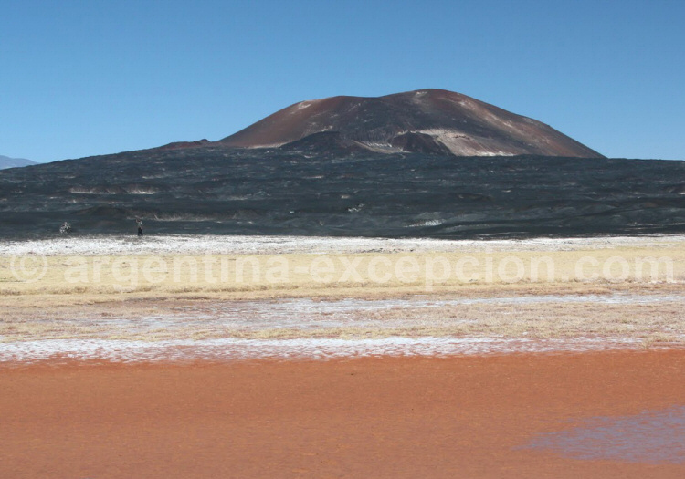 Laguna Carachi Pampa, El Peñon, Catamarca