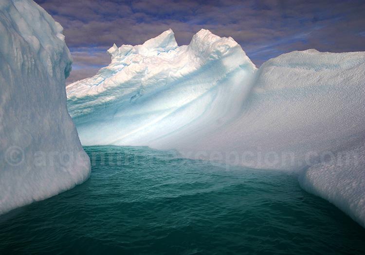 visiter antarctique