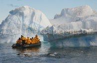 zodiac antarctique