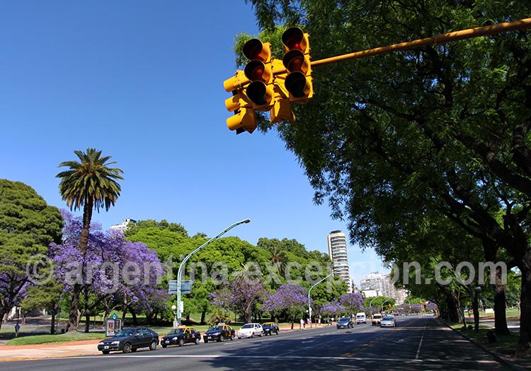 Avenida Libertador, Buenos Aires