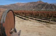 Route des vins, Salta