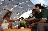 Degustacion de vino en Mendoza