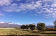 Paysages de Valle de Uco