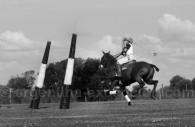 histoire du polo argentin