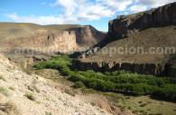 Pinturas en un canyon de Patagonia