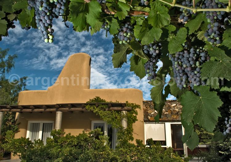 Hôtel Cava Wine Lodge