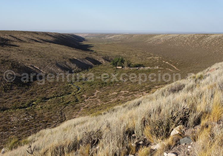 Puesto Cerro Negro, ruisseau Yaucha