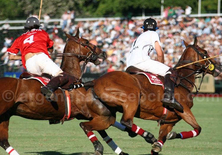 Compétition de polo à Buenos Aires