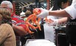crabe royal patagonie