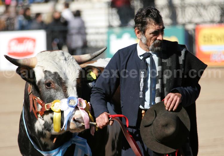 Exposition bovine La Rural, Palermo