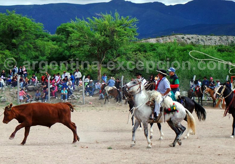 Lasso, Feria de la Pachamama - © Facebook Amaicha del Valle
