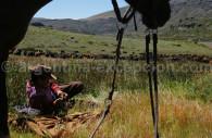 Vida del gaucho, estancia Morado