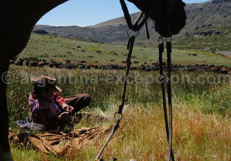 Un gaucho à l'estancia Morado