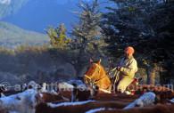 gaucho estancia tres valles argentine