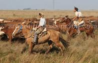 Gauchos a caballo en Rincon Socorro