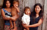The Guaranies, Argentina