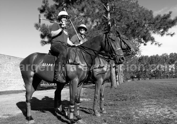 Histoire du polo