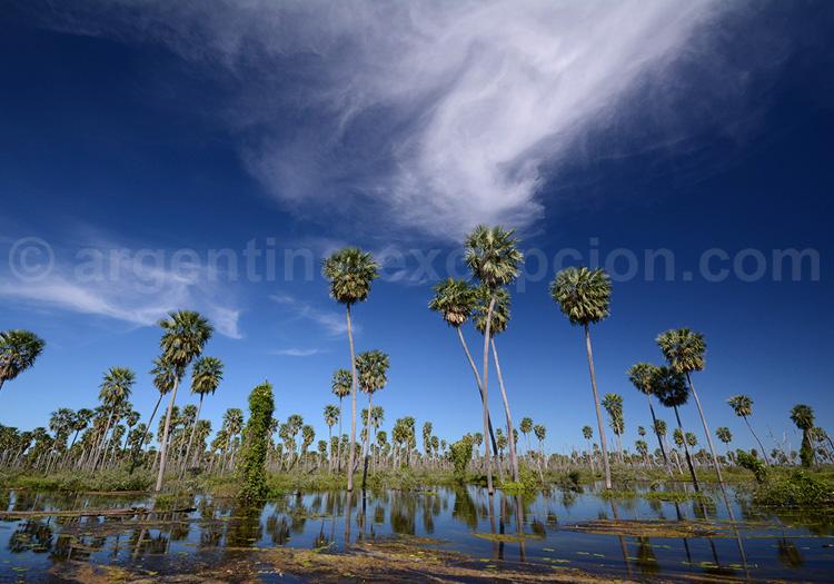 Humedales Chaco, Bañado La Estrella, zone Ramsar