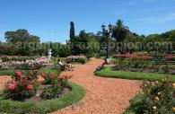 Rosedal, parc de Palermo