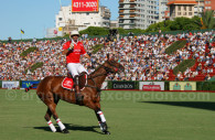 Jugador de polo y su caballo