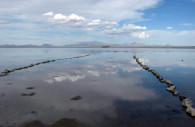Reserva Laguna Llancanelo