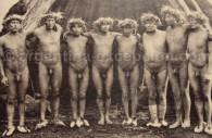 Indiens Selk'nam, Musée ethnographique Ambrosetti