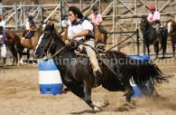 nuestros caballos fete du cheval buenos aires