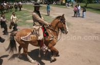 gaucho et son cheval argentine