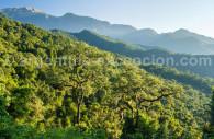 parc national el calilegua