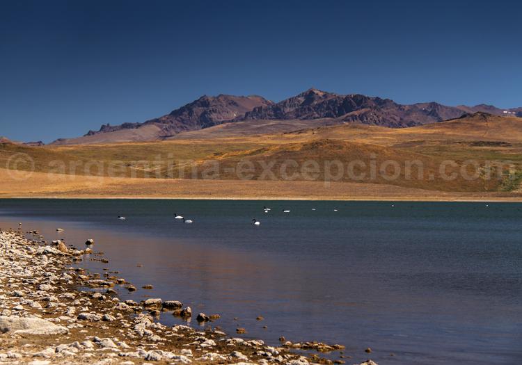 Parc Laguna Blanca, Neuquén, zone Ramsar
