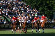 match de polo argentin argentine