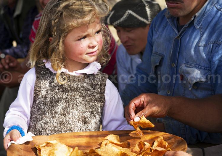 pastelitos patagonie argentine