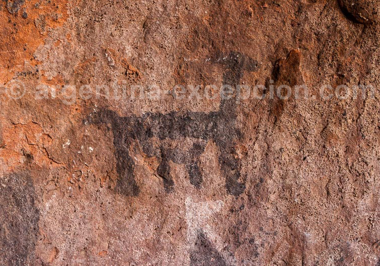 Grotte Inca, peinture rupestre, lama, jujuy