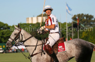 Playing polo in Palermo, Argentina
