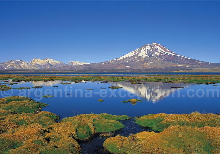 Réserve provinciale Laguna Diamante