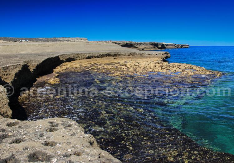 Réserve naturelle péninsule Valdés