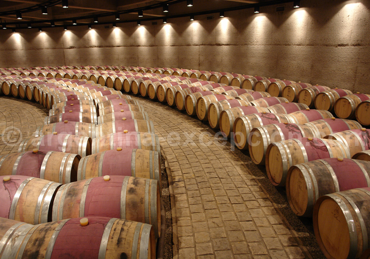 Production viticole argentine