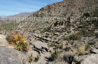 Ruinas de Quilmes en Tucuman