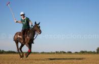 Action au polo