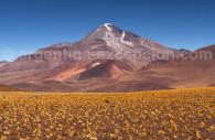 Volcan Llullaillaco, Salta