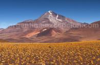 Volcan Llullaillaco province de Salta