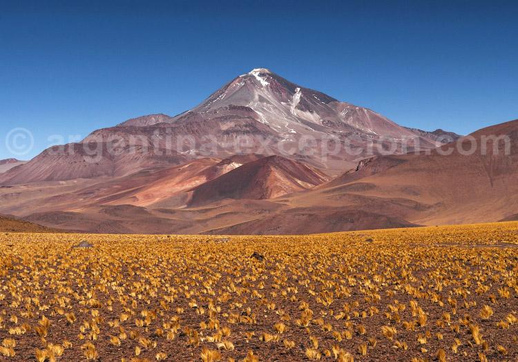 Volcan Llullaillaco, province de Salta