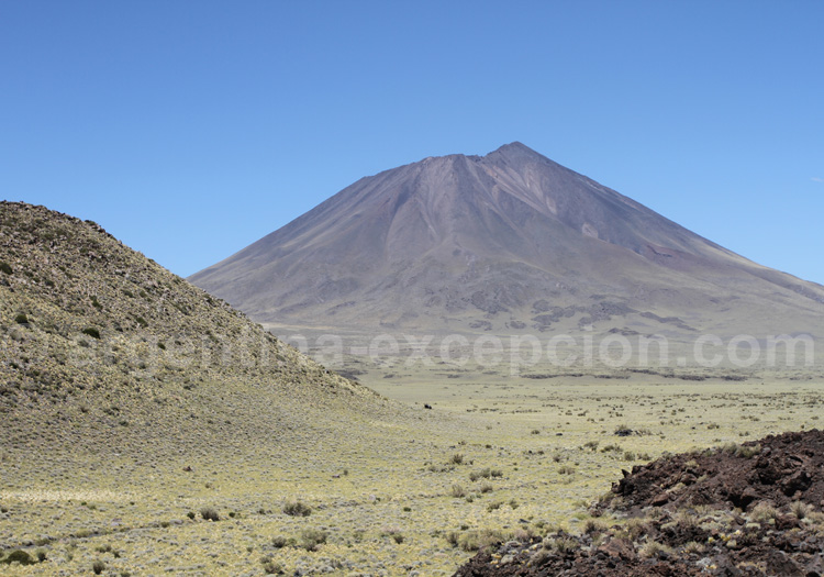 Vallée des volcans de la Payunia candidat au patrimoine mondial de l'Unesco