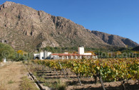 Wine Resort, Cafayate