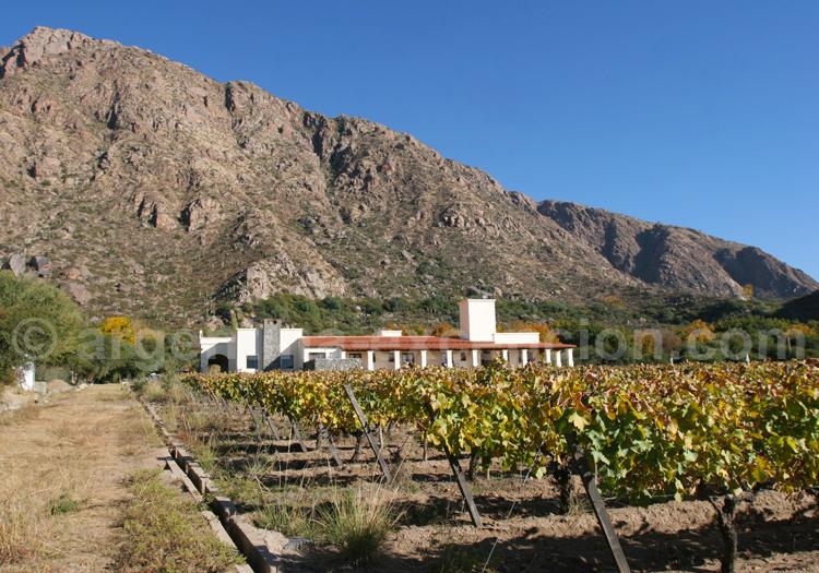 Route des vins, Cafayate, Wine Resort