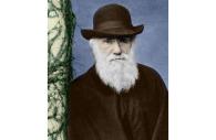 Portrait de DARWIN